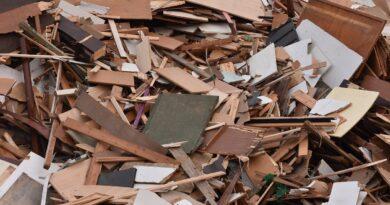 Rimozione del legno: cose da considerare per progettare un giardino
